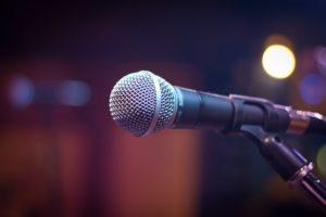 zpěvačka v česku